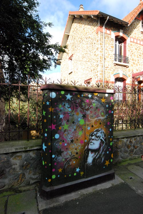 C215 Vitry sur seine / Photo Stéphane Demolombe 3