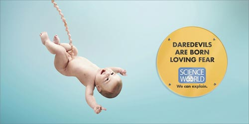 Science world : daredevils are born loving fear